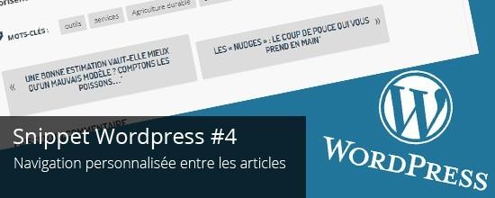 Wordpress - Tutoriel - navigation-personnalisée-entre-articles