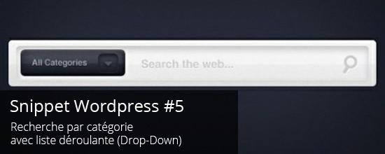 WordPress : Recherche par catégorie avec Drop-Down